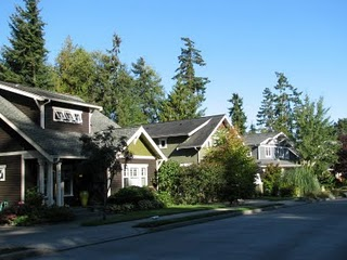 Homes in the North Town Woods Neighborhood on Bainbridge Island