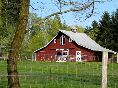 A barn in the Rolling Bay Neighborhood on Bainbridge Island