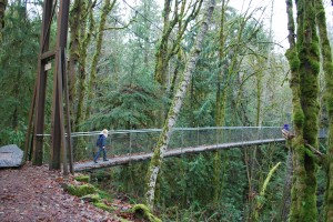 Suspension Bridge at IsandWood on Bainbridge Island