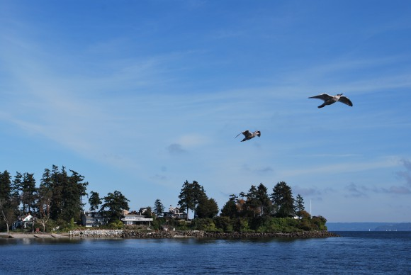View of Wing Point on Bainbridge from the Bainbridge Island Ferry.