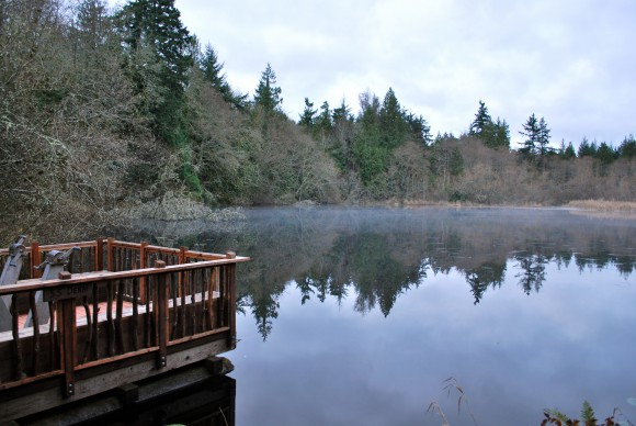 Mac's Pond at IslandWood on Bainbridge Island.  Photo by Jen Pells