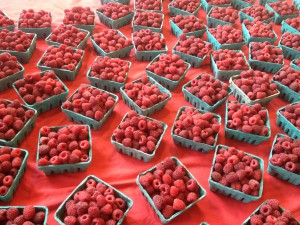 Raspberries on Bainbridge Island