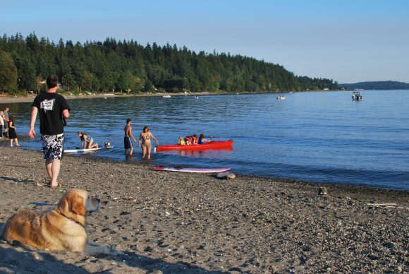 Lyle Beach Bainbridge Island